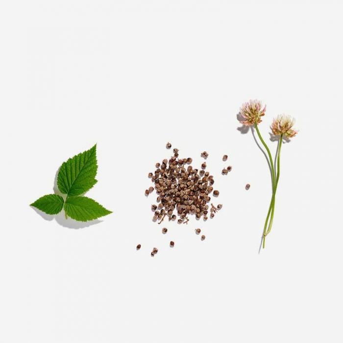 Fertility Loose Leaf Tea
